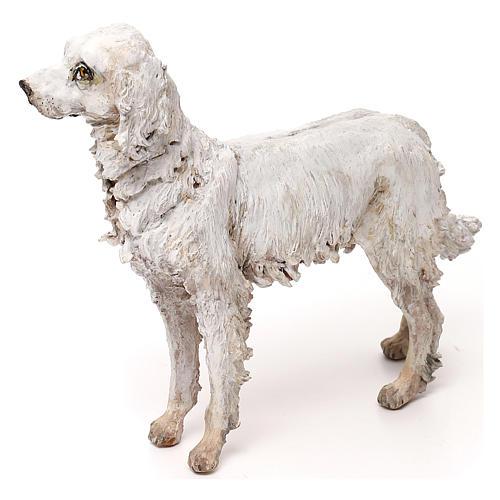 Perro 30 cm belén Tripi 2