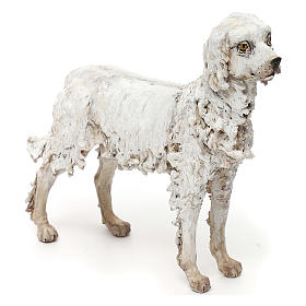 Dog, 30 cm nativity Tripi s3