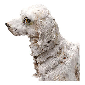 Dog, 30 cm nativity Tripi s5