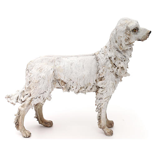 Dog, 30 cm nativity Tripi 1