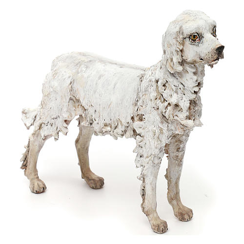 Dog, 30 cm nativity Tripi 3