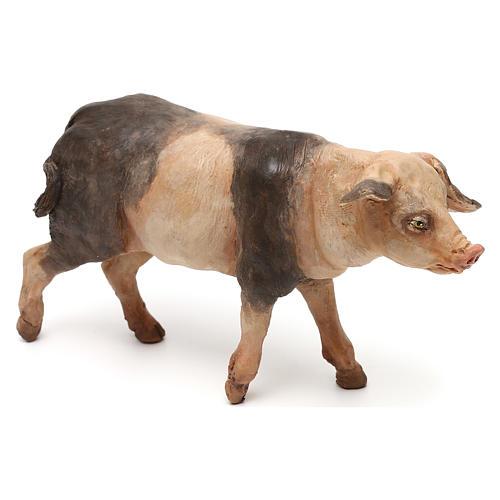 Cerdo 18 cm belén Tripi 3