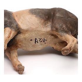 Pig, 18 cm nativity Tripi s5