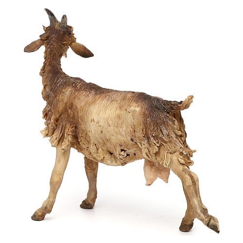 Cabra para belén de 30 cm Angela Tripi 5