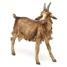 Chèvre pour crèche de 30 cm Angela Tripi s3