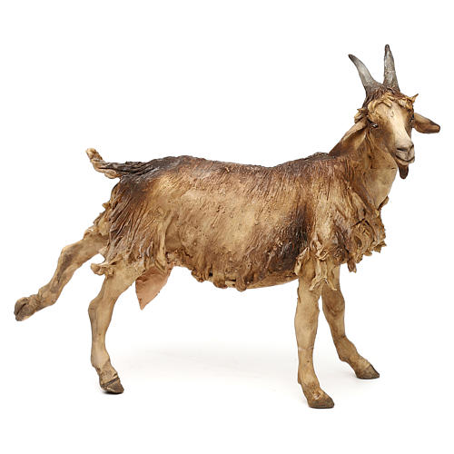 Goat, for 30 cm Nativity Angela Tripi 1