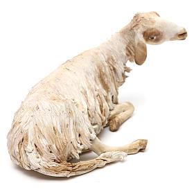 Mouton allongé pour crèche de 30 cm Angela Tripi s4