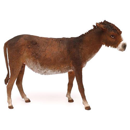 Donkey 30 cm Angela Tripi 1