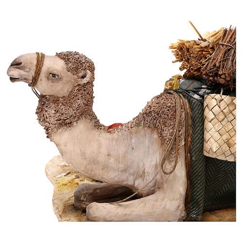 Nativity scene sleeping shepherd with camel, 18 cm by Angela Tripi 4