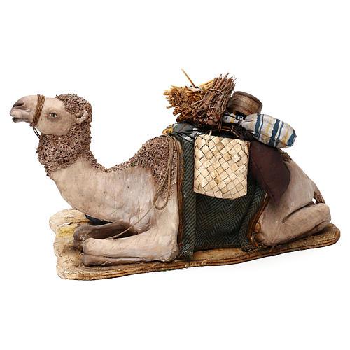 Nativity scene sleeping shepherd with camel, 18 cm by Angela Tripi 6