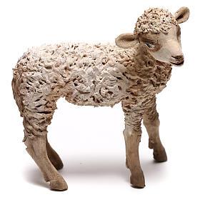 Lamb, 30 cm Angela Tripi Nativity Scene figurine s1