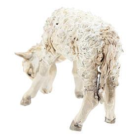 Lamb, 30 cm Angela Tripi Nativity Scene figurine s4