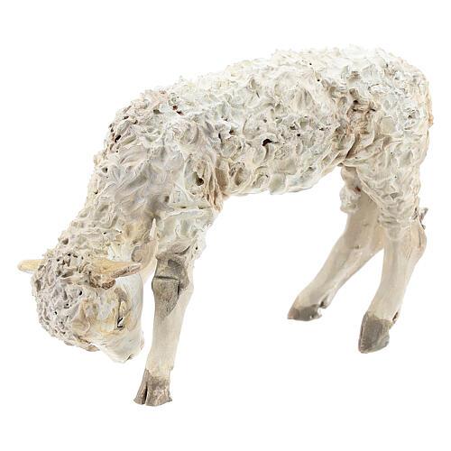 Lamb, 30 cm Angela Tripi Nativity Scene figurine 2