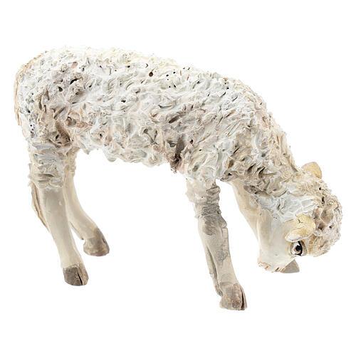 Lamb, 30 cm Angela Tripi Nativity Scene figurine 3