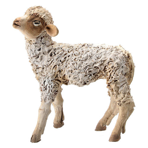 Nativity scene figurine, sheep looking up 13 cm by Angela Tripi 1