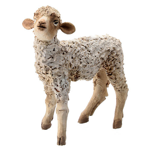 Nativity scene figurine, sheep looking up 13 cm by Angela Tripi 2
