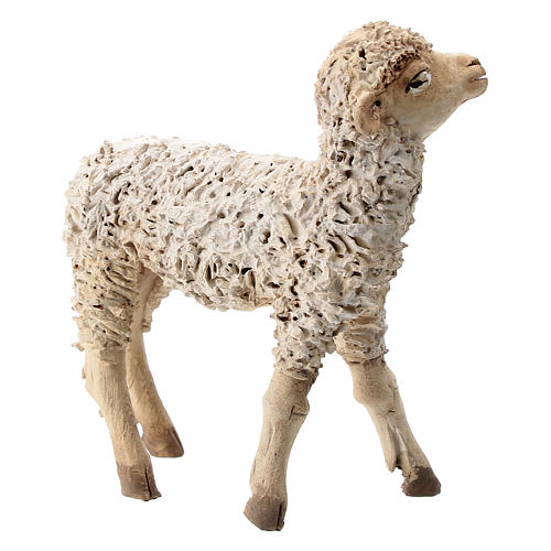 Nativity scene figurine, sheep looking up 13 cm by Angela Tripi 3