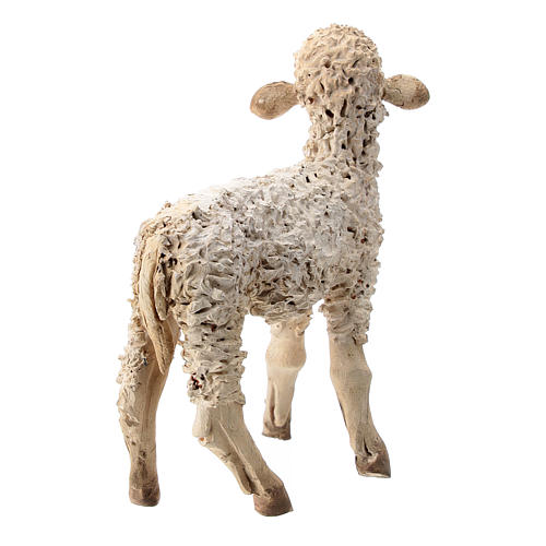 Nativity scene figurine, sheep looking up 13 cm by Angela Tripi 4
