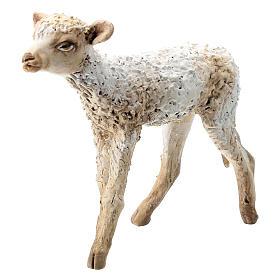Nativity scene figurine, standing lamb 30 cm by Angela Tripi s2
