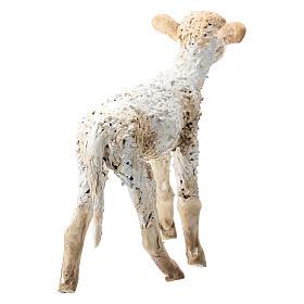 Nativity scene figurine, standing lamb 30 cm by Angela Tripi s4