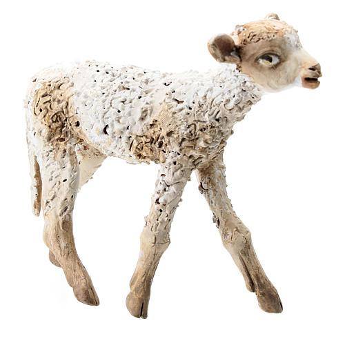 Nativity scene figurine, standing lamb 30 cm by Angela Tripi 3