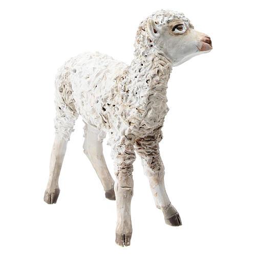 Pecorella in piedi 30 cm per presepi Angela Tripi 3
