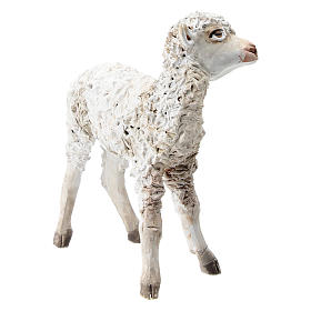 Standing lamb 30 cm for Angela Tripi nativity s3
