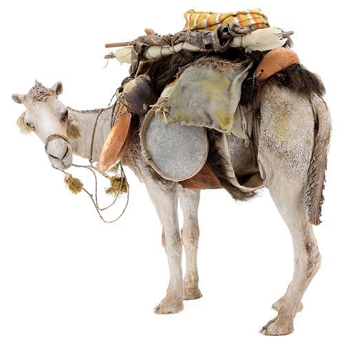 Camello de pie con carga 40 cm Angela Tripi 3