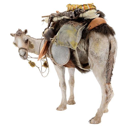 Camello de pie con carga 40 cm Angela Tripi 8