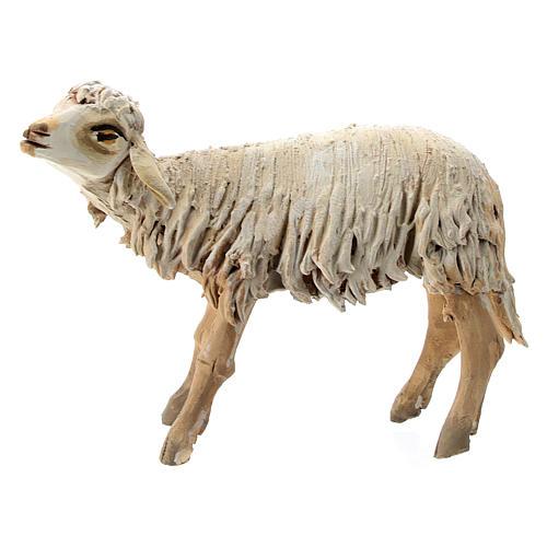 Mouton terre cuite 13 cm création Angela Tripi 1