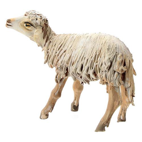 Mouton terre cuite 13 cm création Angela Tripi 3