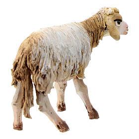 Mouton terre cuite debout 13 cm Angela Tripi s4