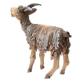 Chèvre terre cuite 13 cm Angela Tripi s3