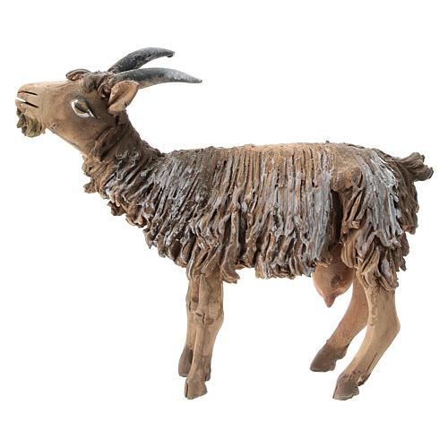 Chèvre terre cuite 13 cm Angela Tripi 1