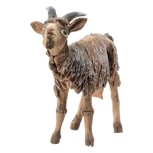 Chèvre terre cuite 13 cm Angela Tripi 2