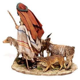 Nativity scene figurine, Shepherd with herd by Angela Tripi 13 cm s5