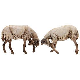 Scena caproni in lotta presepe 30 cm Tripi s1