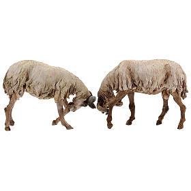 Scena caproni in lotta presepe 30 cm Tripi s7