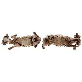 Scena caproni in lotta presepe 30 cm Tripi s8