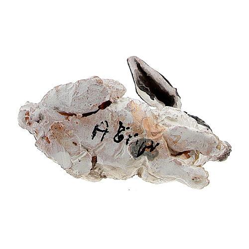 Coniglio per presepe 13 cm, Angela Tripi 5