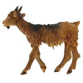 Goat statue 18 cm Angela Tripi terracotta s1