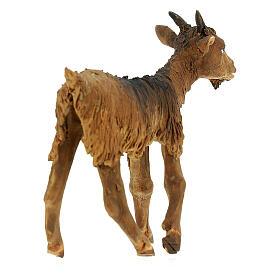 Goat statue 18 cm Angela Tripi terracotta s4