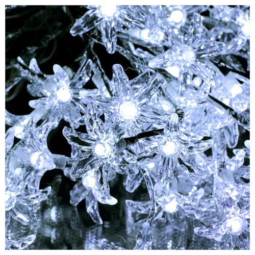 Luci Fiori Trasparenti 100 led bianco freddo interno esterno 3