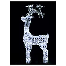 Renna diamanti 150 led bianco freddo interno esterno s2