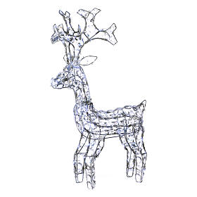 Diamond reindeer 80 leds ice white for external and internal use s1
