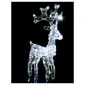 Diamond reindeer 80 leds ice white for external and internal use s3