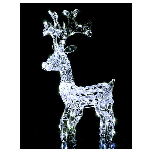 Diamond reindeer 80 leds ice white for external and internal use 2