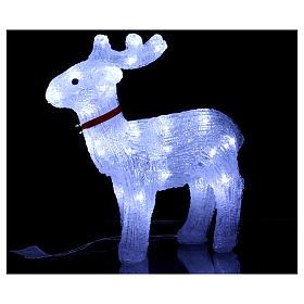 Renna luminosa 40 led bianco freddo uso interno s2