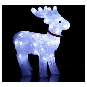 Renna luminosa 40 led bianco freddo uso interno s3