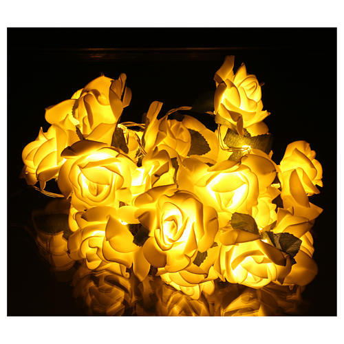 Light cable 20 leds white roses 2